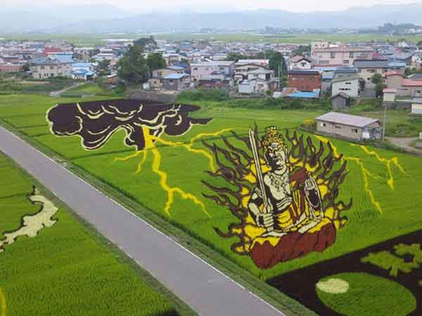 these-rice-fields-in-japan-look-like-ordinary-rice-fields-but-take-a-look-what-happens-next-artnaz-com-12