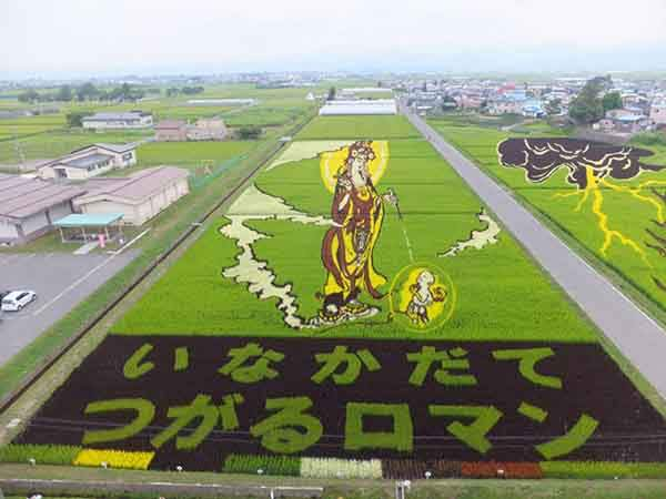 these-rice-fields-in-japan-look-like-ordinary-rice-fields-but-take-a-look-what-happens-next-artnaz-com-13