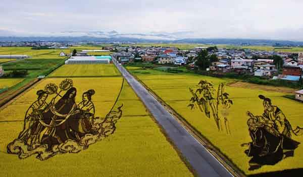 these-rice-fields-in-japan-look-like-ordinary-rice-fields-but-take-a-look-what-happens-next-artnaz-com-14