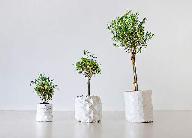 origami-pot-plant-grows-studio-ayaskan-4