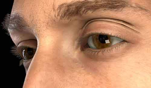 3049566-slide-s-2a-detailed-spatio-temporal-reconstruction-of-eyelids-image