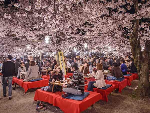 why-kyoto-was-chosen-as-the-best-city-in-the-world-23-photo-proofs-artnaz-com-8