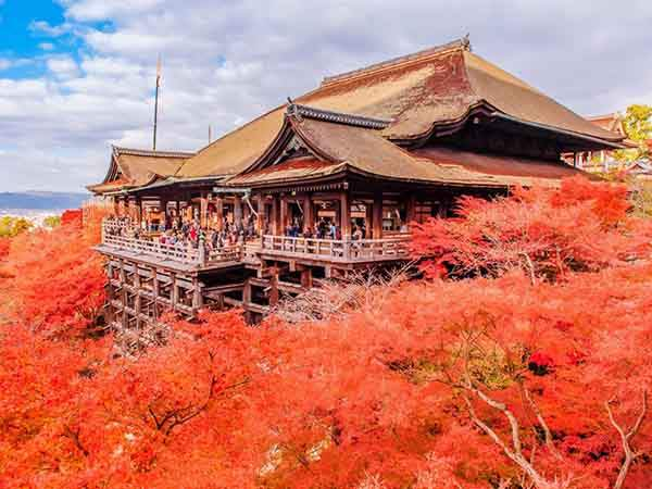 why-kyoto-was-chosen-as-the-best-city-in-the-world-23-photo-proofs-artnaz-com-9