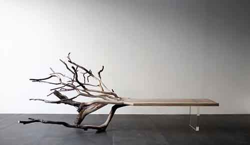 fallen-tree-bench-benjamin-graindorge-paris-1__880