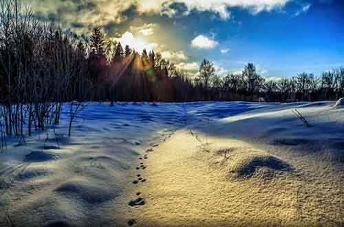 16-pictures-showing-that-winter-is-a-masterpiece-artnaz-com-4