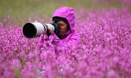 Nature-photographers5__880