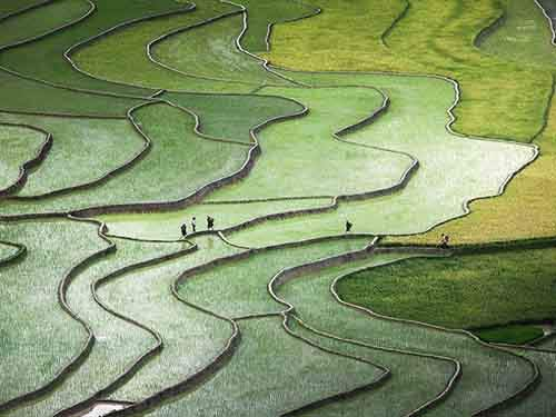 best-of-national-geographic-october-2015-5