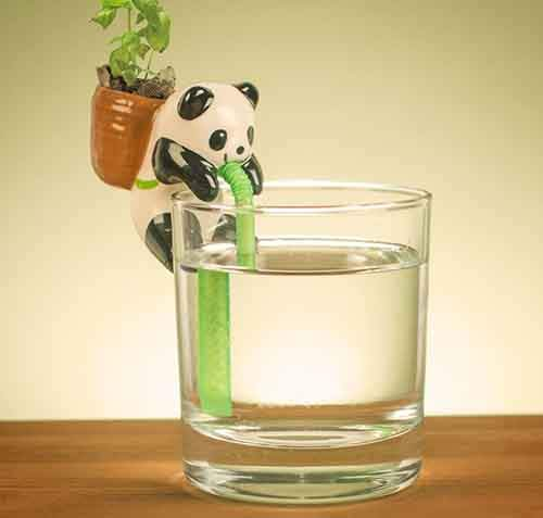 cute-self-watering-ceramic-planters-54