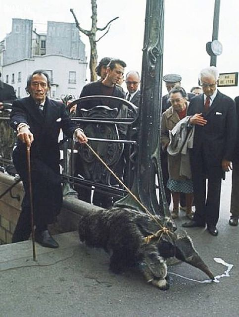 Salvador Dali walking his pet anteater, 1969.