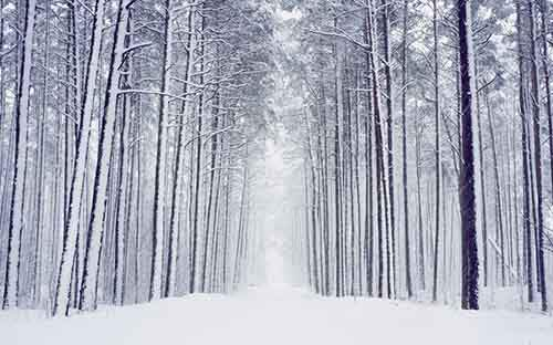 19-amazingly-beautiful-winter-landscapes-from-around-the-world-artnaz-com-7