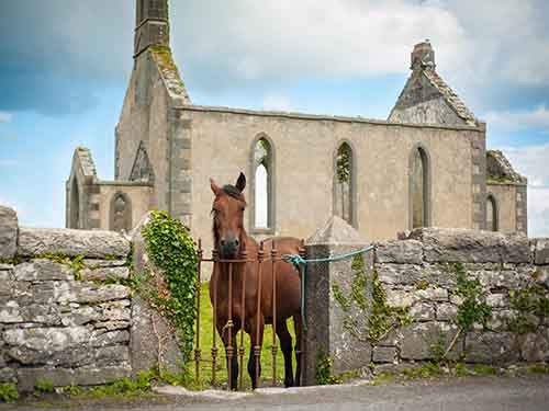 ireland-church-horse_94615_990x742