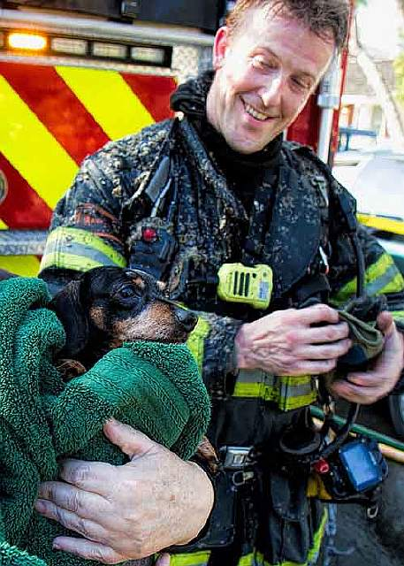firefighters-rescuing-animals-saving-pets-23-5729e7ae08db4__605
