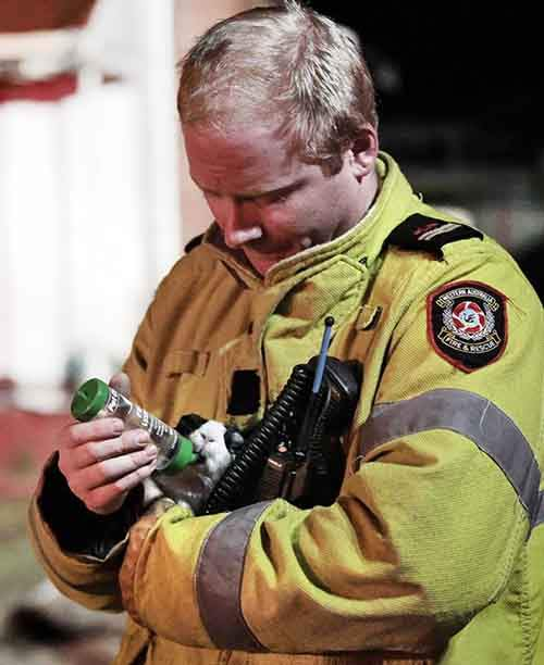 firefighters-rescuing-animals-saving-pets-30-572a098550a60__605