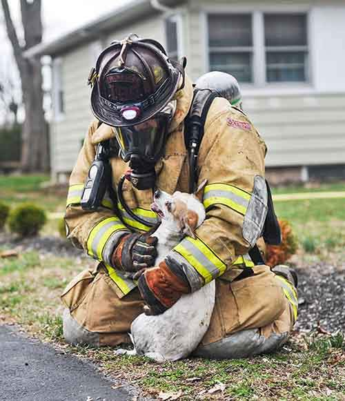 firefighters-rescuing-animals-saving-pets-51-5729f623bd9e6__605