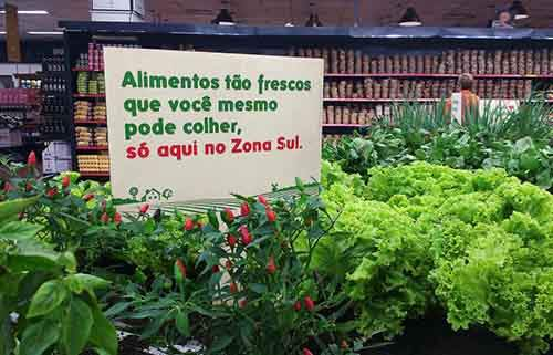 3061399-inline-s-1-at-this-brazilian-supermarket-customers-pick-produce-from-a-garden