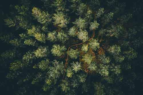 best-drone-photography-2016-dronestagram-contest-21-5783b76b15c80__880