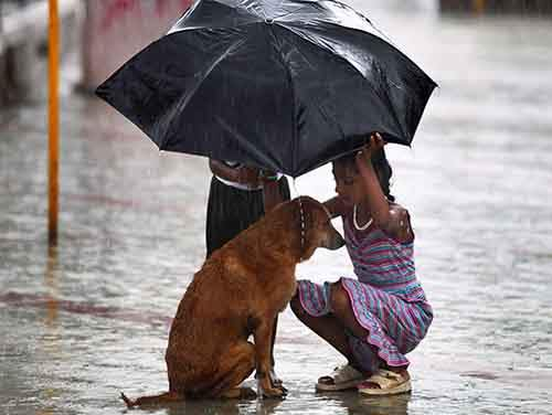 good-kids-acts-of-kindness-restore-faith-humanity-parenting-40-57849df51a5b8__605