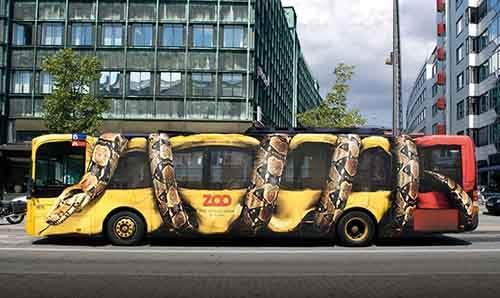 buses or cars