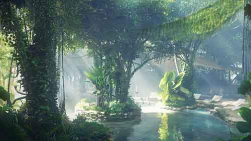 rainforest-hotel-rosemon13