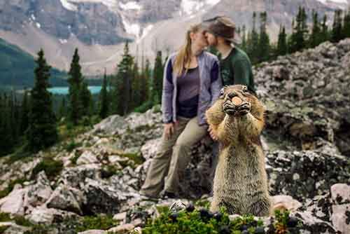 squirrel-photobombs-engagement-photoshoot-kelin-flanagan-spencer-taubner-bdkf-2