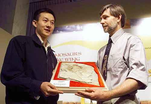 the-archaeoraptor-fossil-in-1999