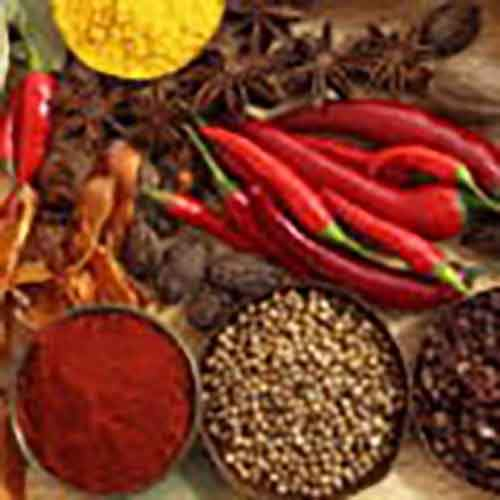 4563herbs-and-spices-in-culinary
