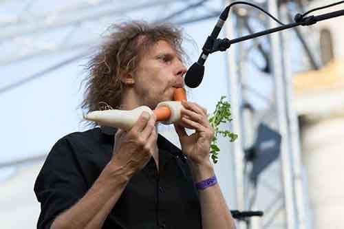 the_vegetable_orchestra_popfest2015-610x406