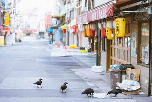 japan-street-photography-50-580888dd4265f__880