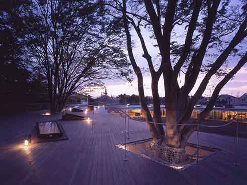 the-space-also-weaves-nature-into-its-design-classrooms-contain-real-trees-that-extend-through-the-boardwalk-above