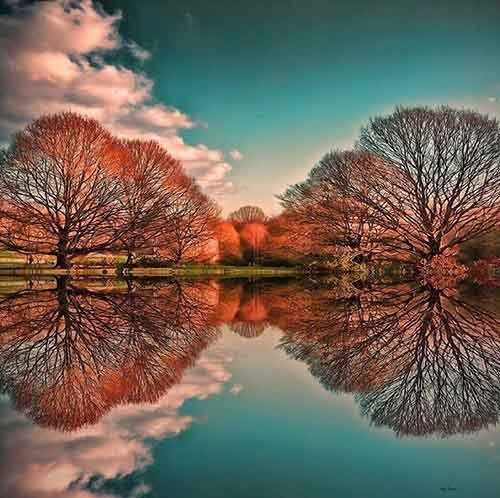 amazing-reflections-optical-illusions-38-5836d9346d198__700