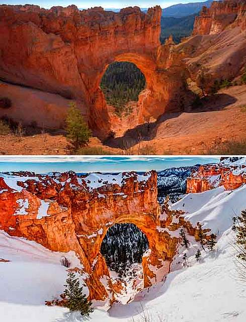 before-after-summer-winter-photography-changing-seasons-timelapse-17-57614812b73a1__880