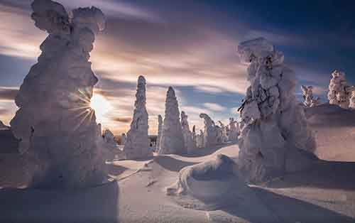 northern-lights-photography-finland-70jpg-584e64b11a6e0__880