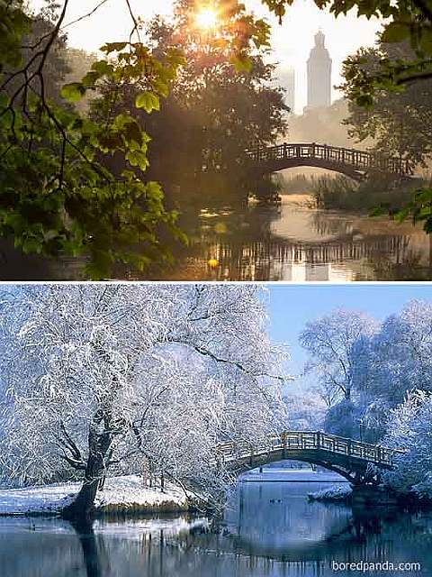 summer-winter-44