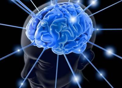 Наука изучающая мозг человека