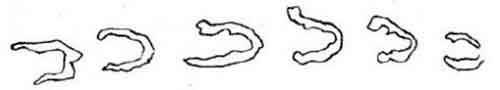 hoofprints-4-480x86