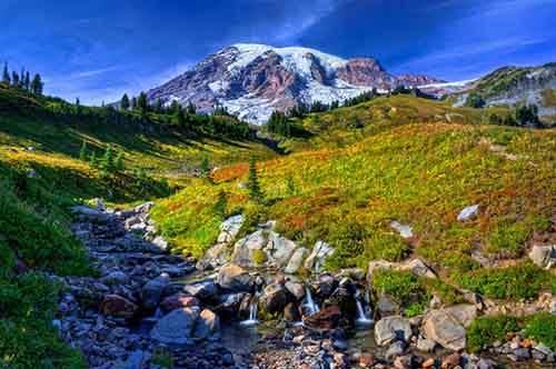 Mount-Rainier7
