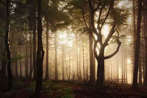 brothers-grimm-wanderings-landscape-photography-kilian-schonberger-15