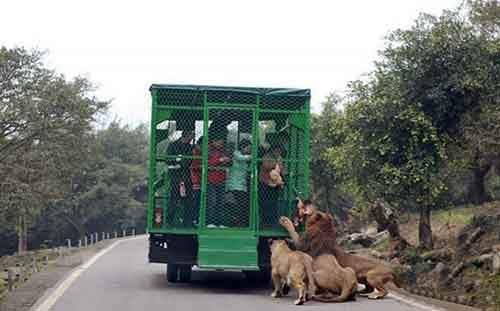 lehe-ledu-wildlife-zoo-wcht03-640x398