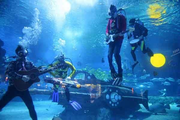 unique-festivals-around-the-world-underwater-festival-florida-keys