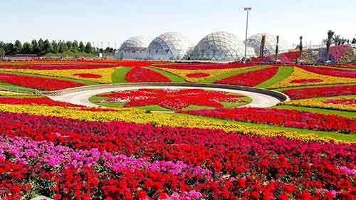 it-is-the-8th-wonder-of-the-world-unique-garden-in-dubai-will-surprise-even-the-most-avid-artnaz-com-17