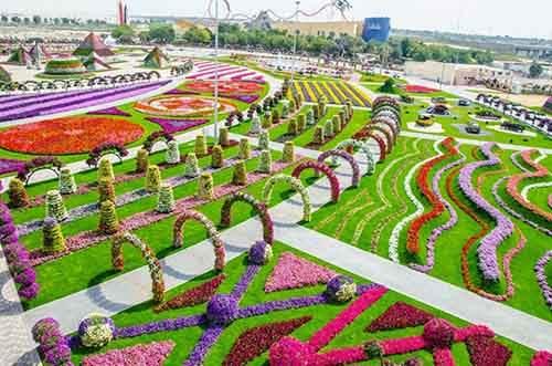 it-is-the-8th-wonder-of-the-world-unique-garden-in-dubai-will-surprise-even-the-most-avid-artnaz-com-2