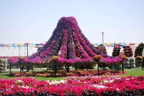 it-is-the-8th-wonder-of-the-world-unique-garden-in-dubai-will-surprise-even-the-most-avid-artnaz-com-7