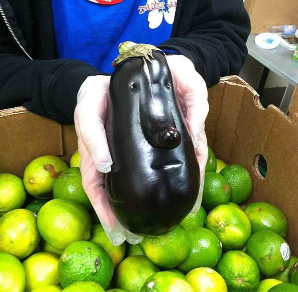 unusual-shape-fruit-vegetables-105__605