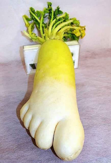 unusual-shape-fruit-vegetables-8__605