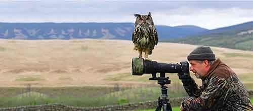 фотограф с совой