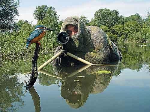 nature-photographers-33__880