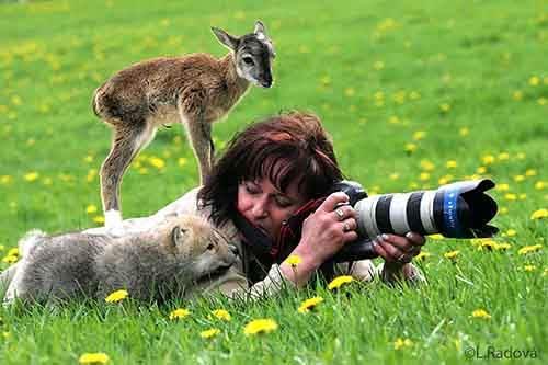 nature-photographers-37__880