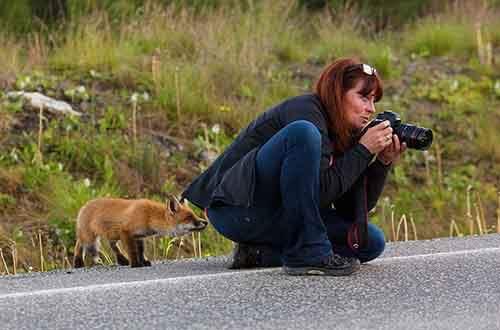 nature-photographers-46__880