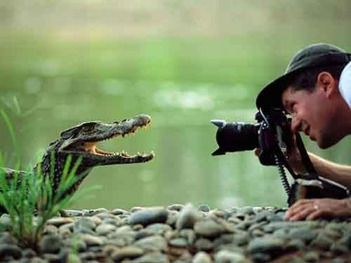 nature-photographers__880