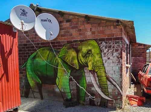 interactive-elephant-street-art-falco-one-south-africa-11